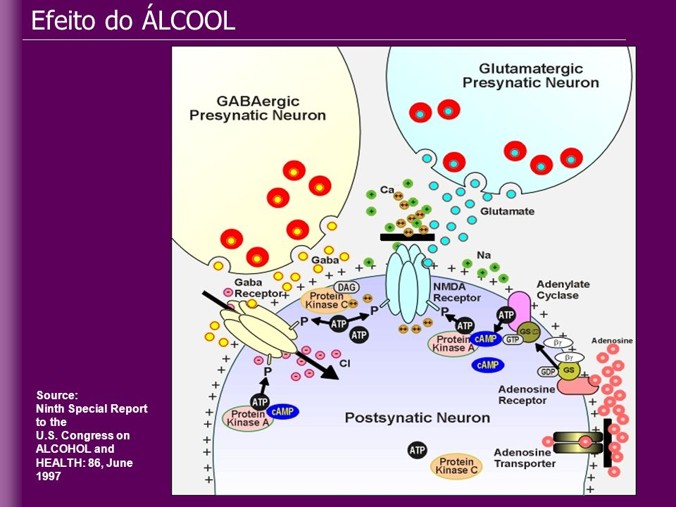 Efeito do ÁLCOOL Source: Ninth Special Report to the