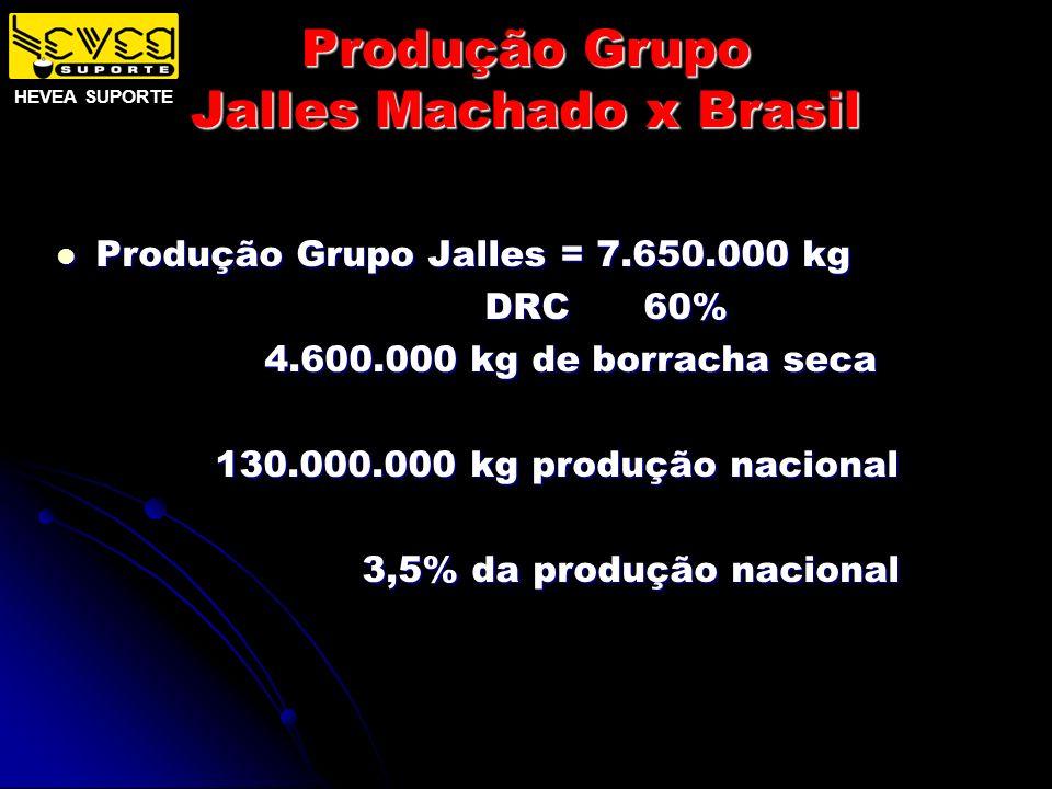 Produção Grupo Jalles Machado x Brasil