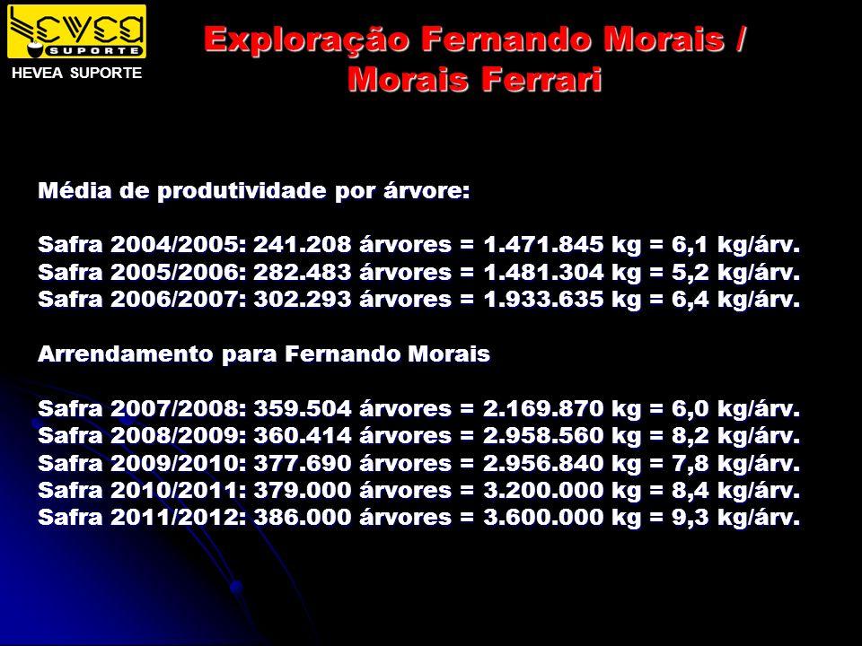 Exploração Fernando Morais / Morais Ferrari