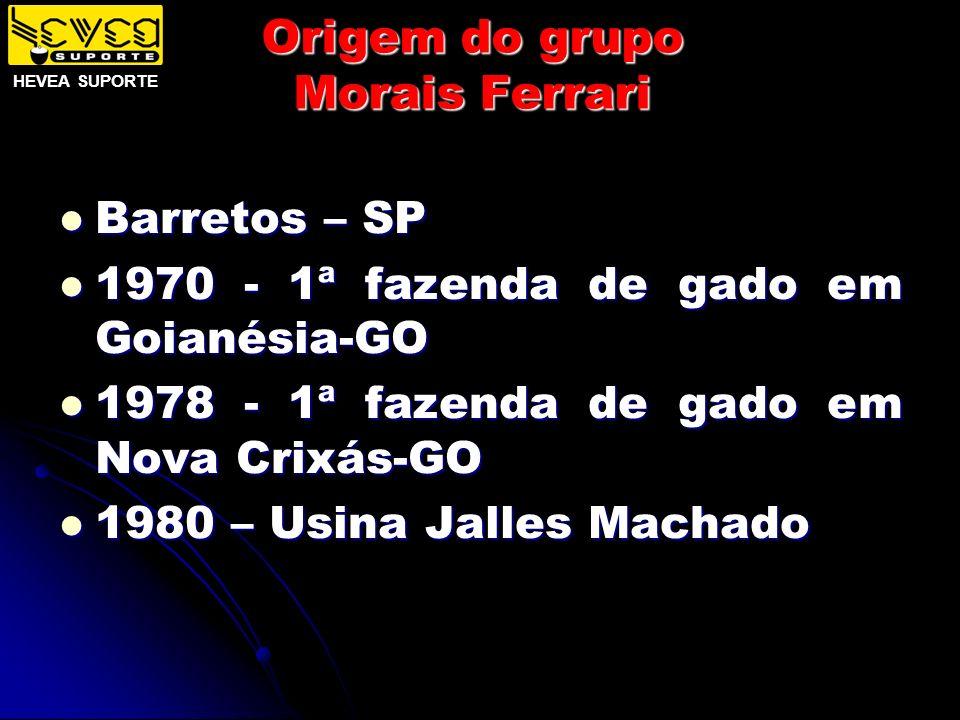 Origem do grupo Morais Ferrari