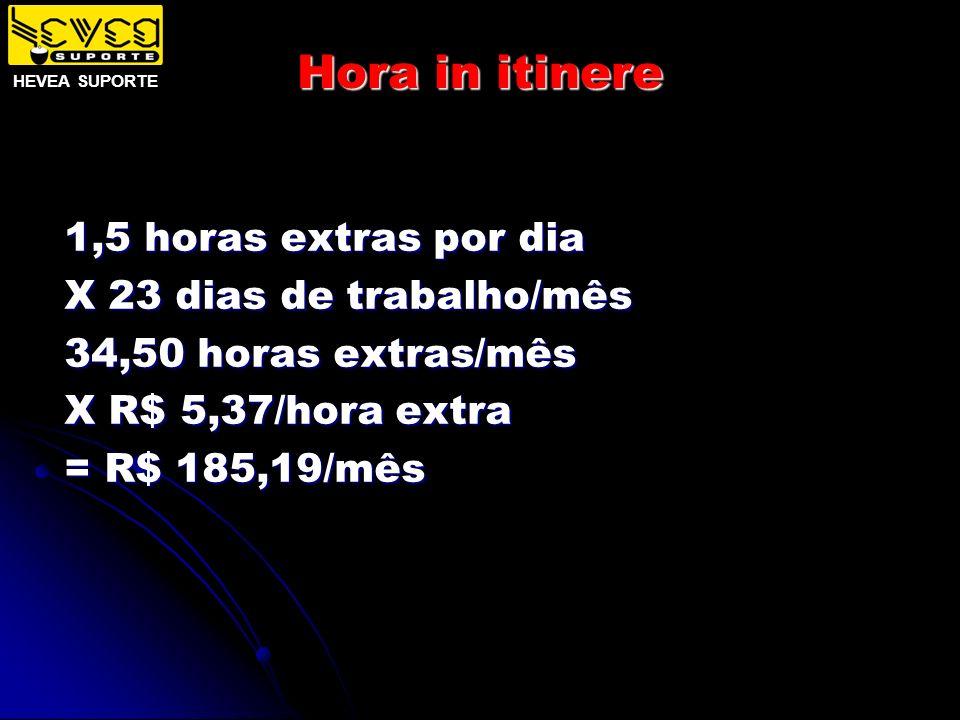 Hora in itinere 1,5 horas extras por dia X 23 dias de trabalho/mês