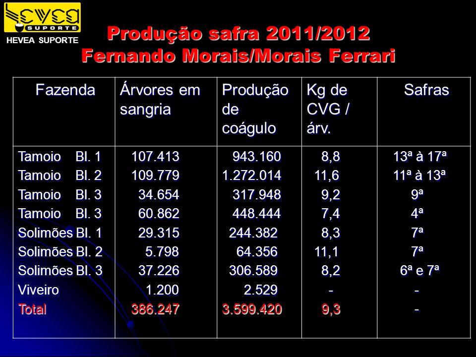 Produção safra 2011/2012 Fernando Morais/Morais Ferrari