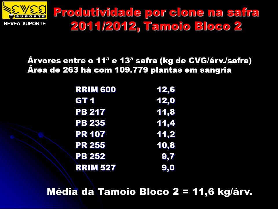 Produtividade por clone na safra 2011/2012, Tamoio Bloco 2