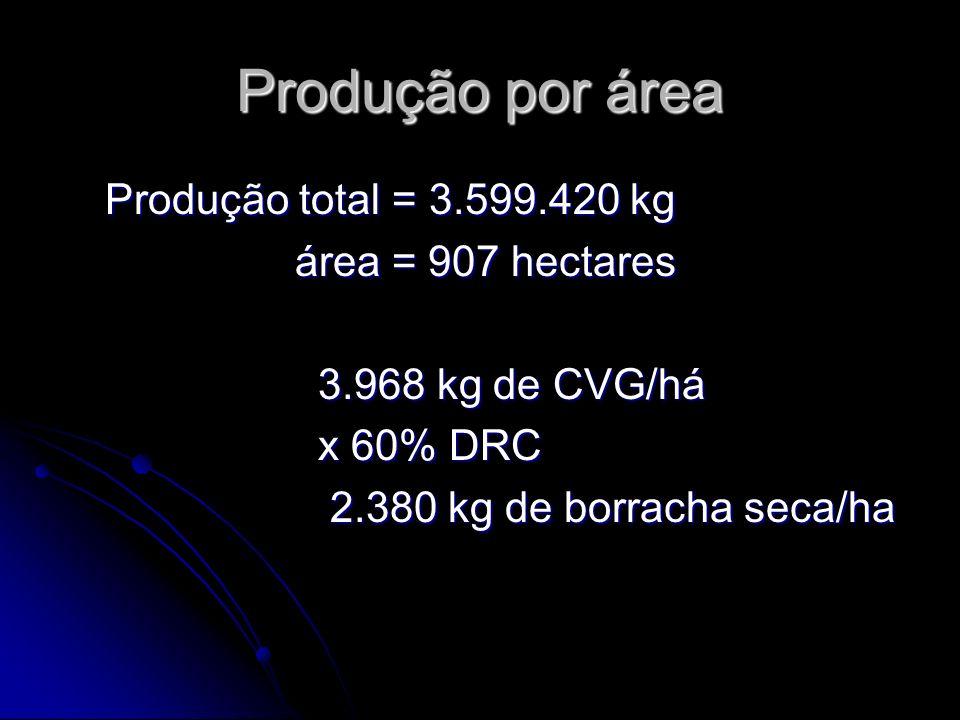 Produção por área Produção total = 3.599.420 kg área = 907 hectares 3.968 kg de CVG/há x 60% DRC 2.380 kg de borracha seca/ha