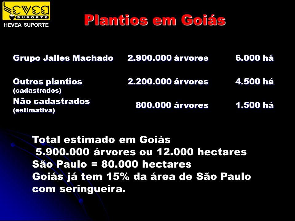 Plantios em Goiás Total estimado em Goiás