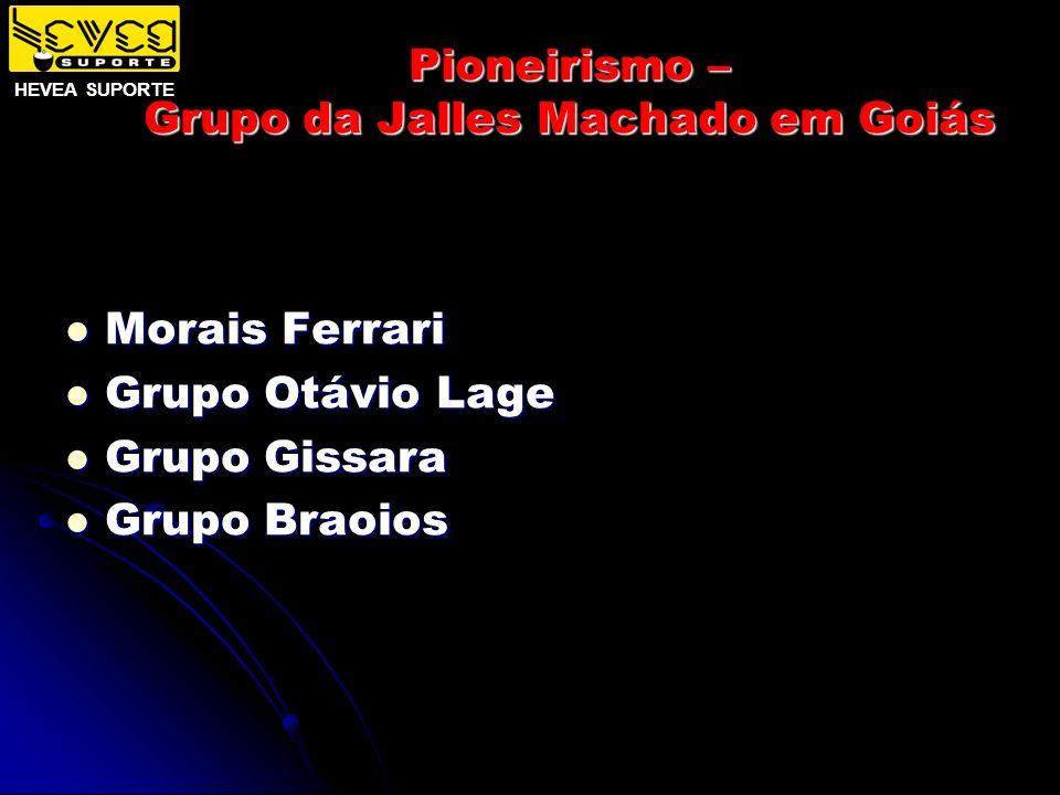 Pioneirismo – Grupo da Jalles Machado em Goiás