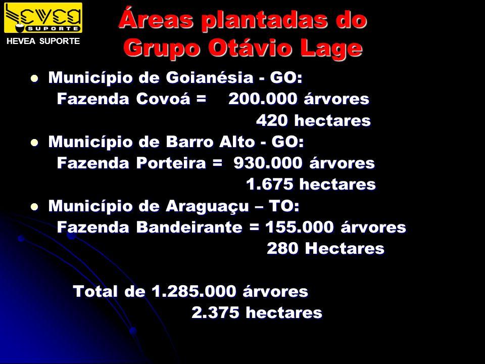 Áreas plantadas do Grupo Otávio Lage