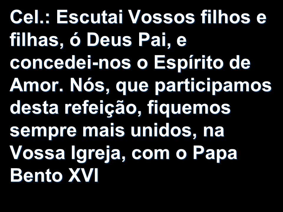 Cel.: Escutai Vossos filhos e filhas, ó Deus Pai, e concedei-nos o Espírito de Amor.