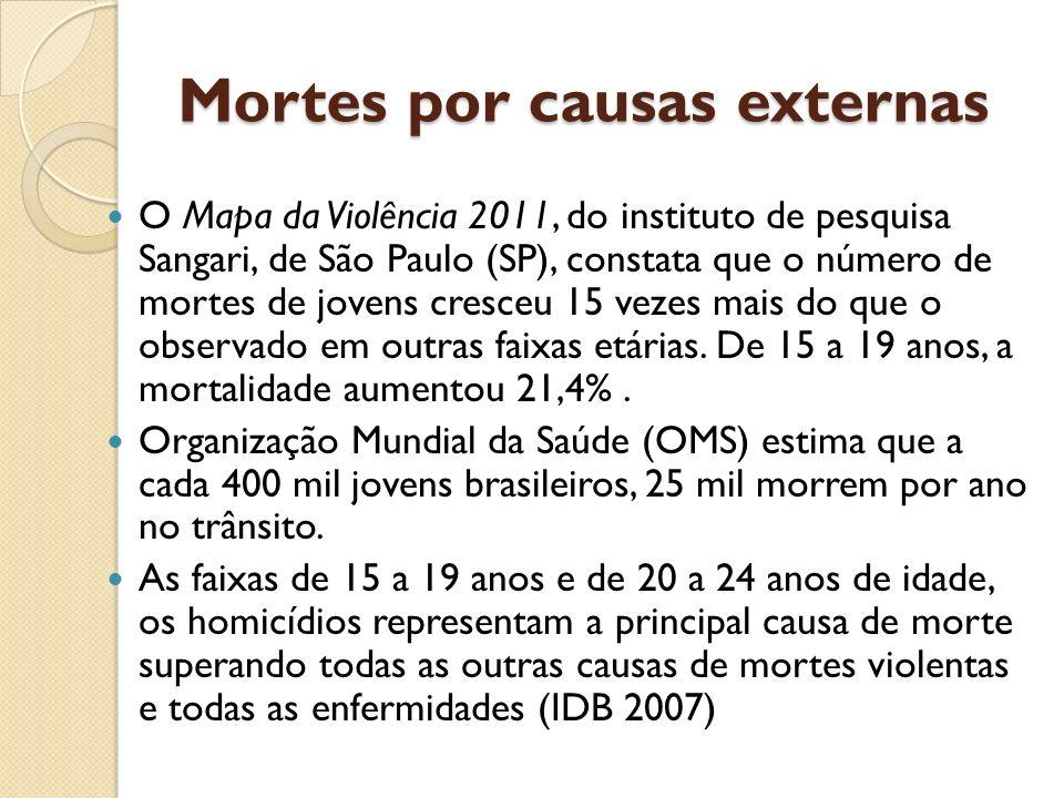 Mortes por causas externas