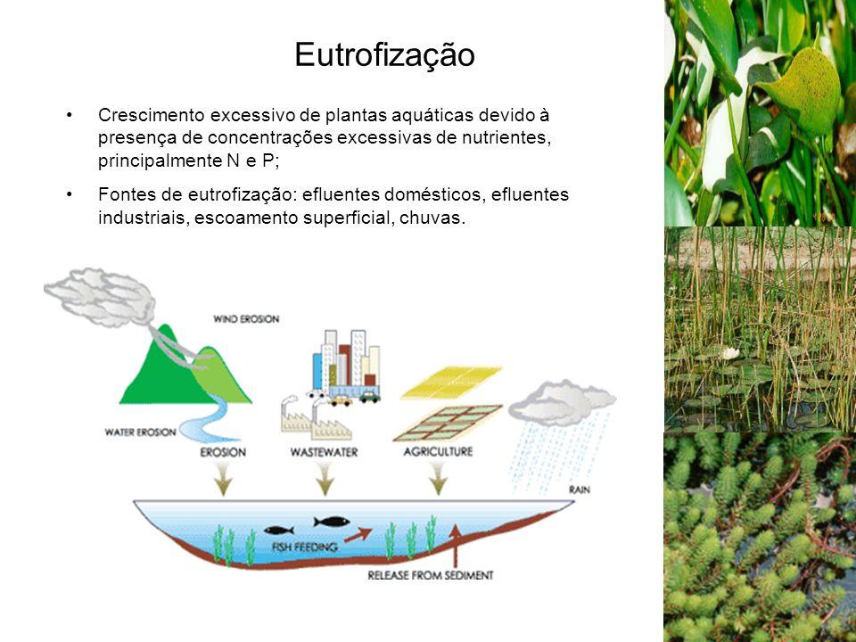 Eutrofização Crescimento excessivo de plantas aquáticas devido à presença de concentrações excessivas de nutrientes, principalmente N e P;