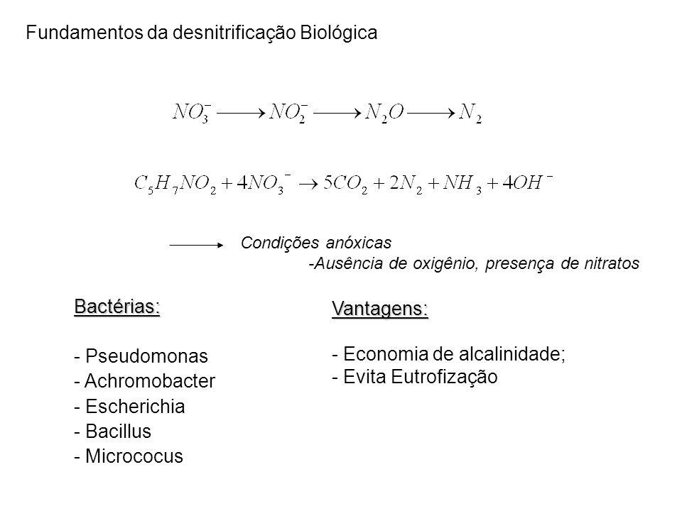 Fundamentos da desnitrificação Biológica