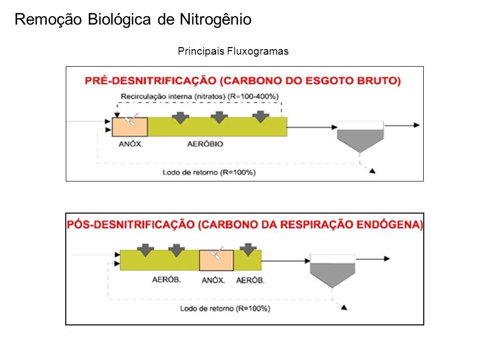 Remoção Biológica de Nitrogênio