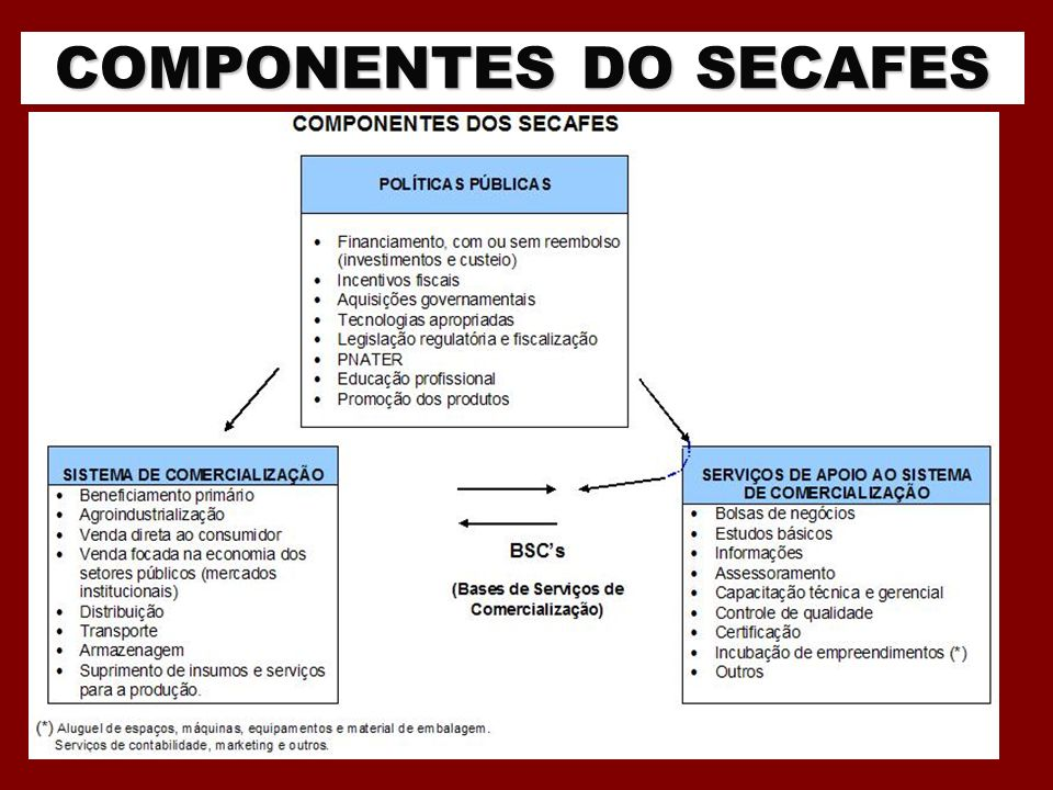 COMPONENTES DO SECAFES