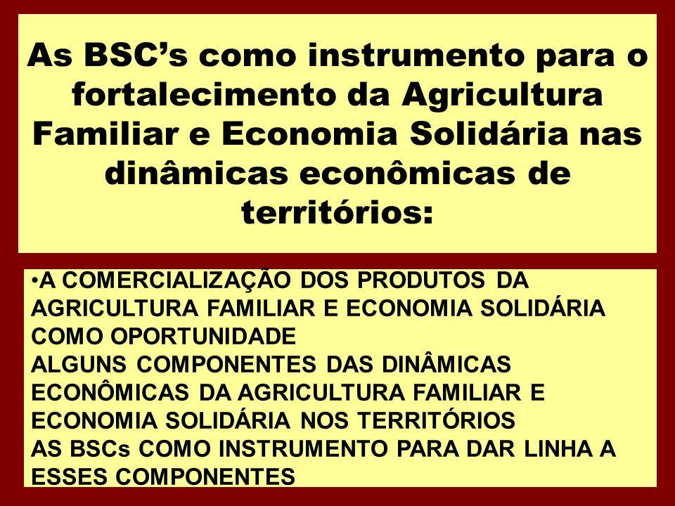 As BSC's como instrumento para o fortalecimento da Agricultura Familiar e Economia Solidária nas dinâmicas econômicas de territórios: