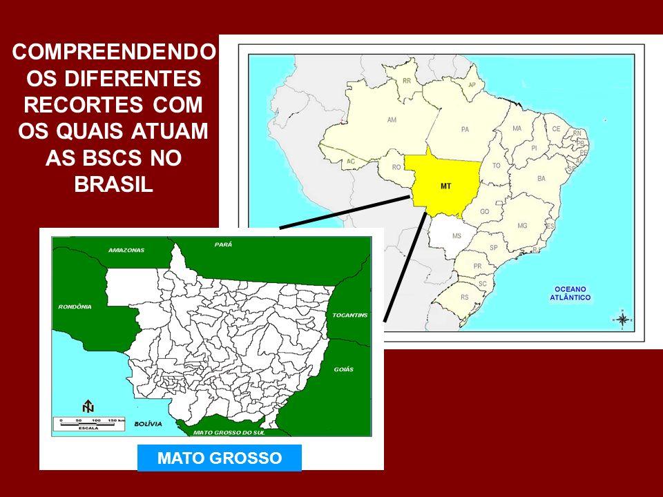 COMPREENDENDO OS DIFERENTES RECORTES COM OS QUAIS ATUAM AS BSCS NO BRASIL