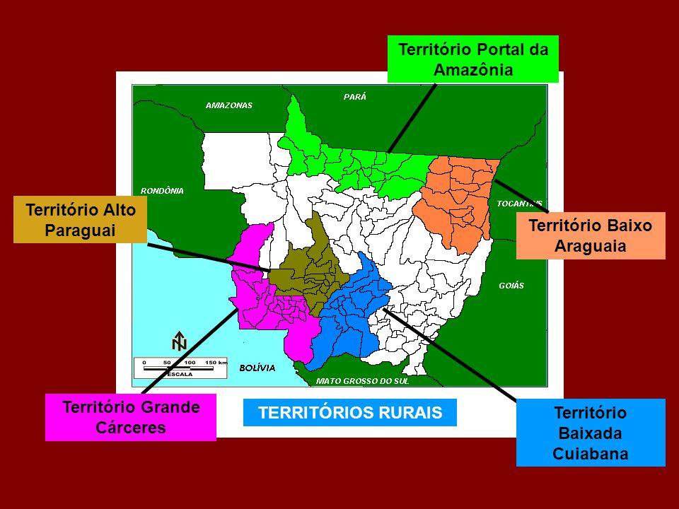 Território Portal da Amazônia