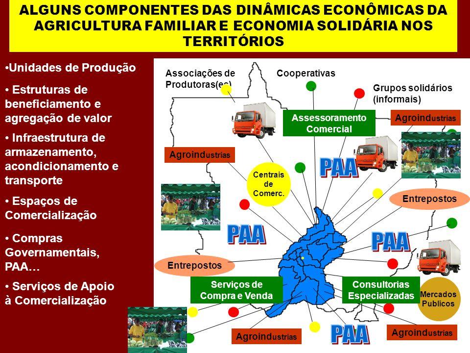 ALGUNS COMPONENTES DAS DINÂMICAS ECONÔMICAS DA AGRICULTURA FAMILIAR E ECONOMIA SOLIDÁRIA NOS TERRITÓRIOS