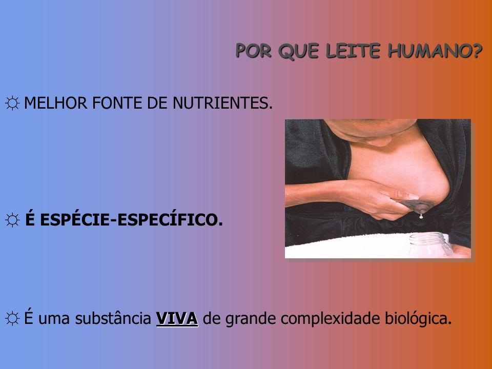 POR QUE LEITE HUMANO ☼ MELHOR FONTE DE NUTRIENTES.