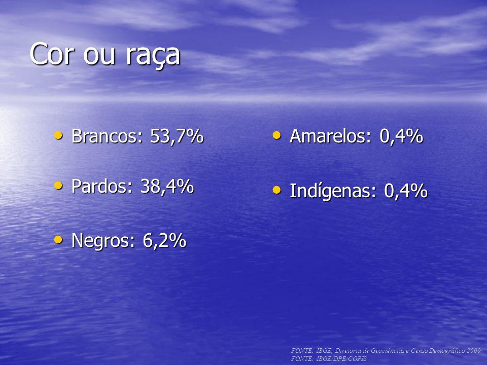 Cor ou raça Brancos: 53,7% Pardos: 38,4% Negros: 6,2% Amarelos: 0,4%