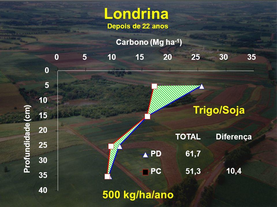 Londrina Trigo/Soja 500 kg/ha/ano Carbono (Mg ha-1) 5 10 15 20 25 30