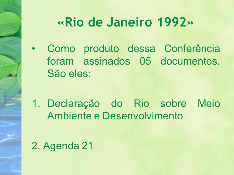«Rio de Janeiro 1992» Como produto dessa Conferência foram assinados 05 documentos. São eles:
