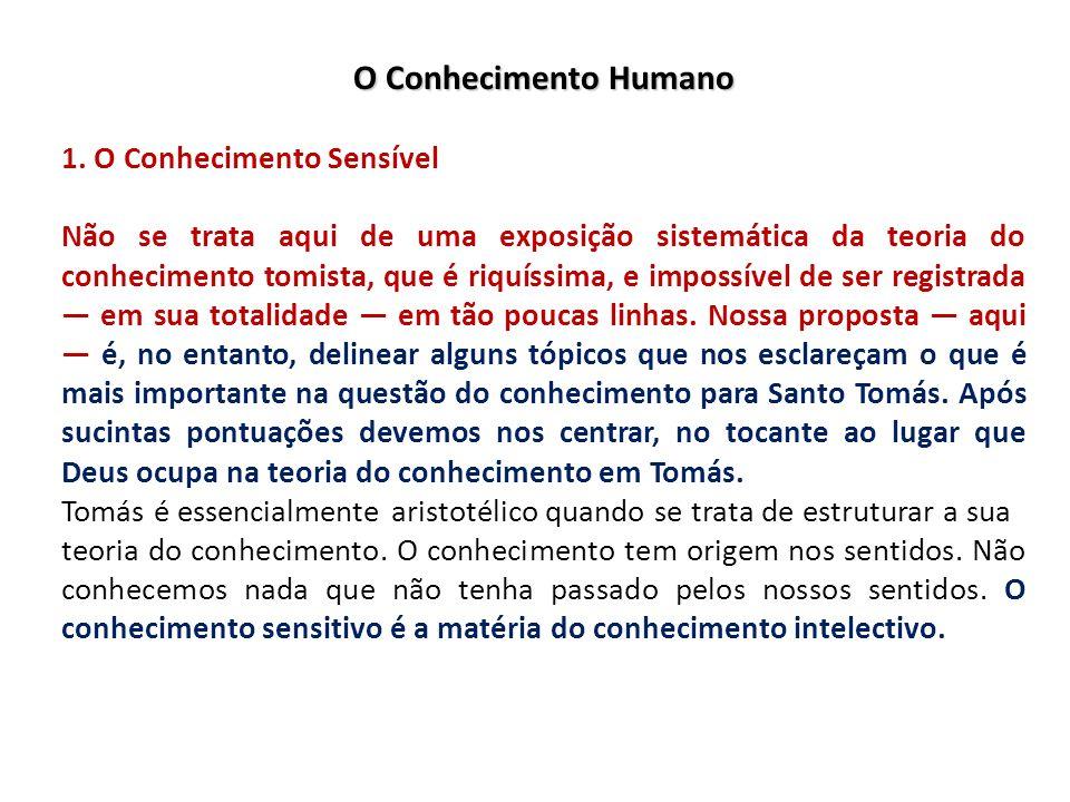 O Conhecimento Humano 1. O Conhecimento Sensível