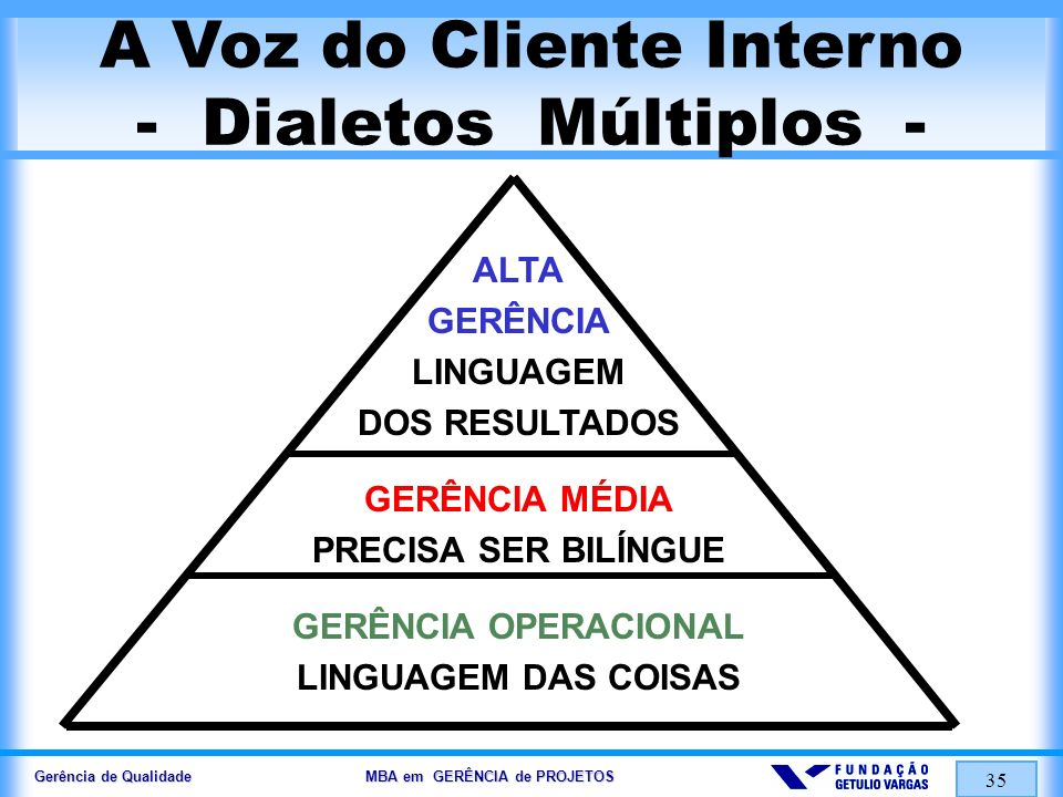 A Voz do Cliente Interno - Dialetos Múltiplos -