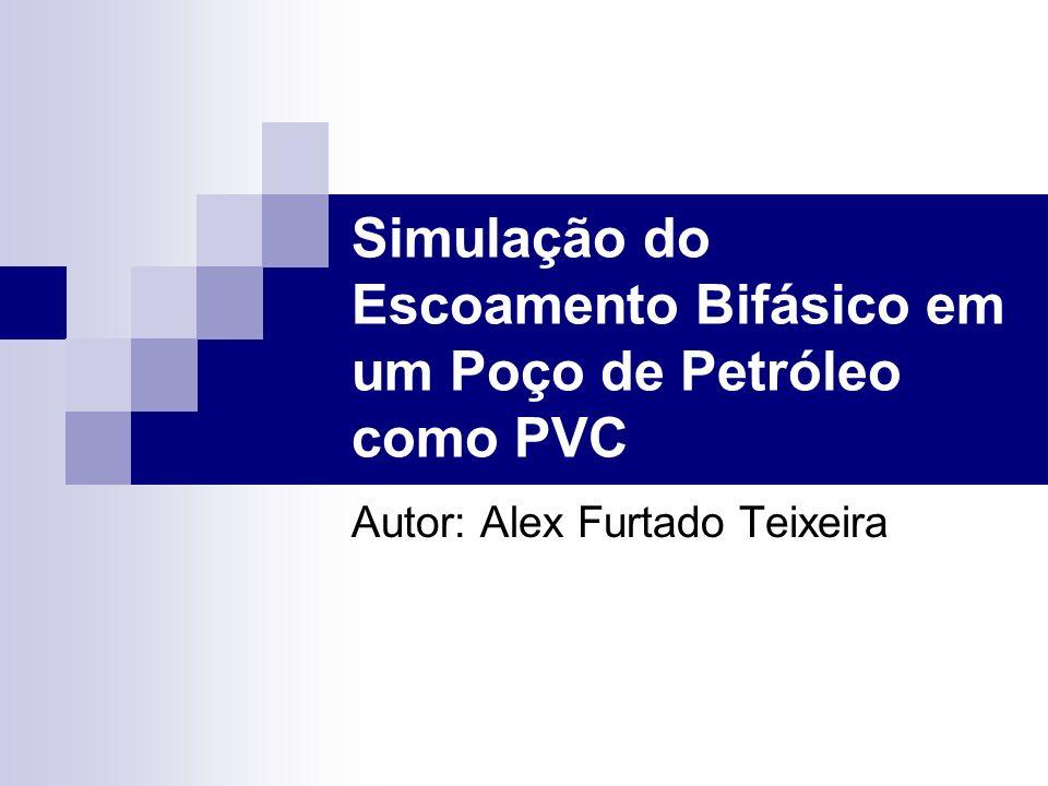 Simulação do Escoamento Bifásico em um Poço de Petróleo como PVC