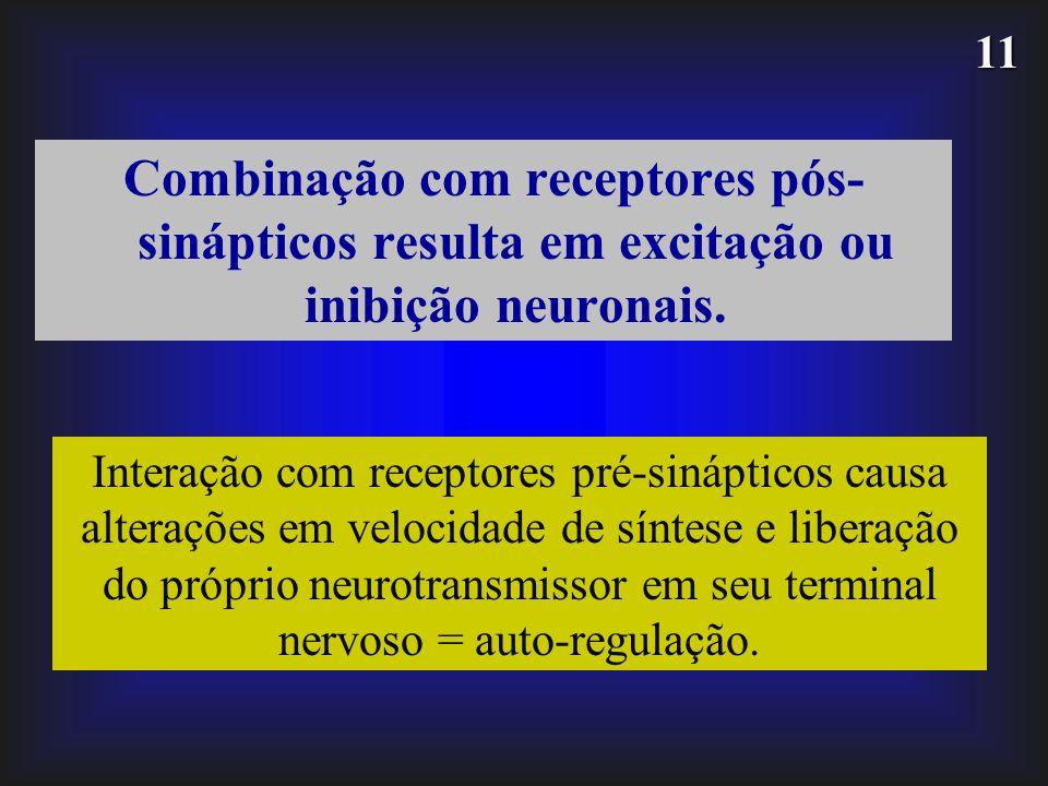 Combinação com receptores pós-sinápticos resulta em excitação ou inibição neuronais.