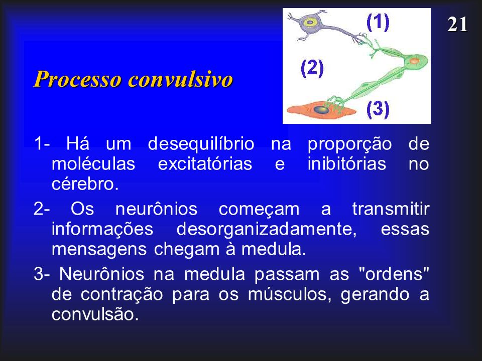 Processo convulsivo1- Há um desequilíbrio na proporção de moléculas excitatórias e inibitórias no cérebro.