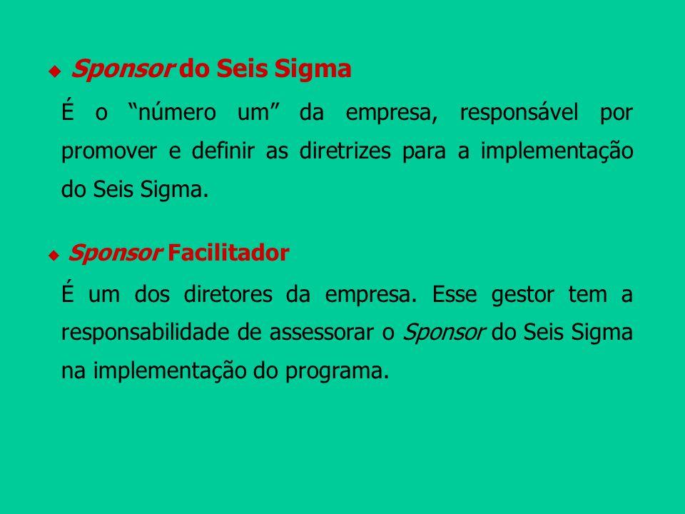 Sponsor do Seis Sigma É o número um da empresa, responsável por promover e definir as diretrizes para a implementação do Seis Sigma.