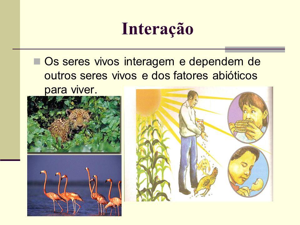 InteraçãoOs seres vivos interagem e dependem de outros seres vivos e dos fatores abióticos para viver.