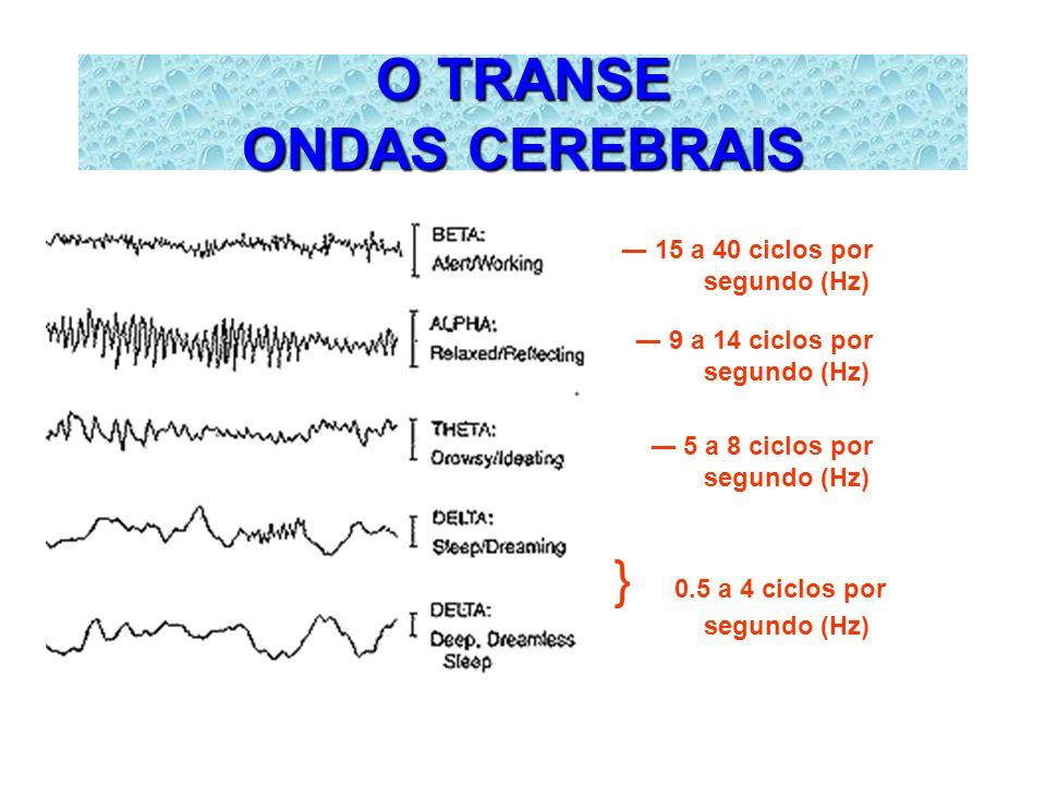 O TRANSE ONDAS CEREBRAIS