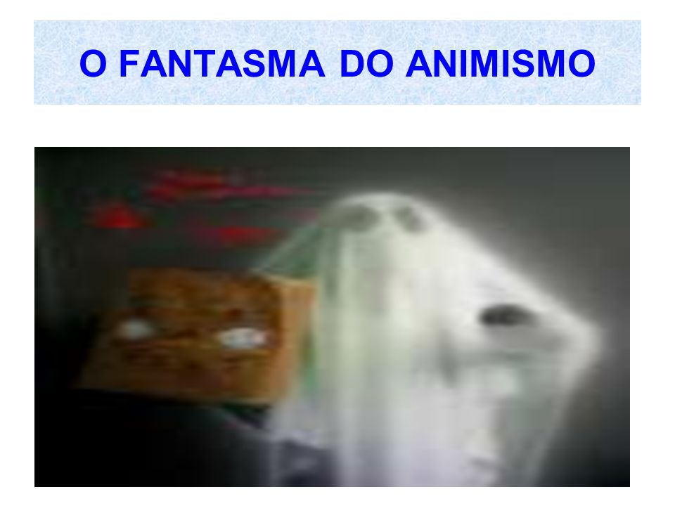 O FANTASMA DO ANIMISMO