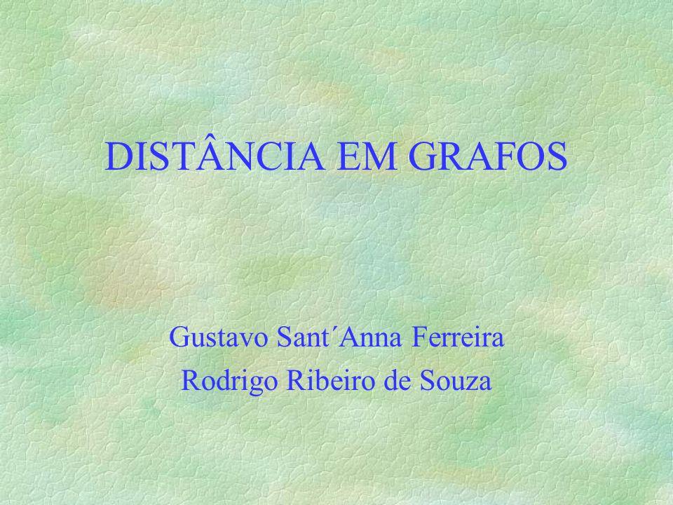 Gustavo Sant´Anna Ferreira Rodrigo Ribeiro de Souza