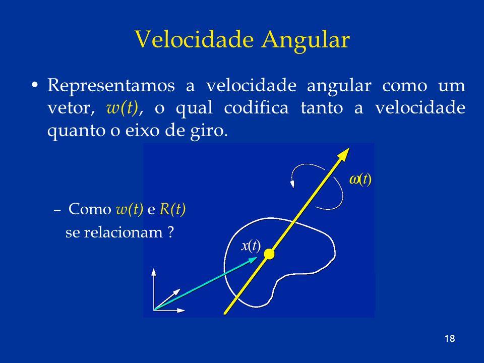 Velocidade Angular Representamos a velocidade angular como um vetor, w(t), o qual codifica tanto a velocidade quanto o eixo de giro.