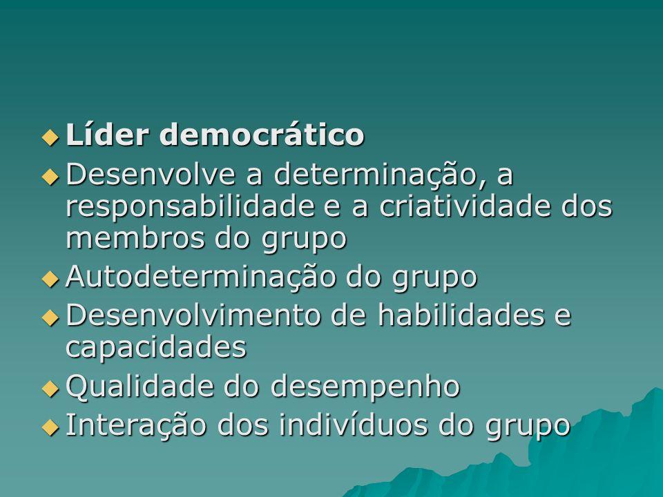 Líder democrático Desenvolve a determinação, a responsabilidade e a criatividade dos membros do grupo.