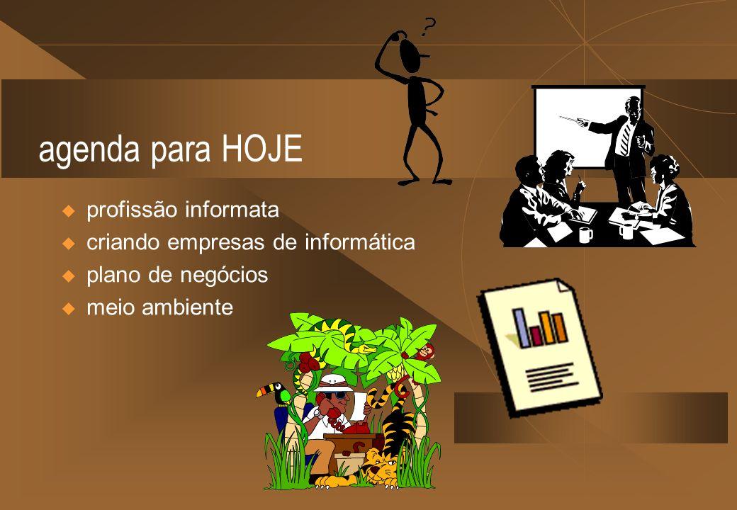 agenda para HOJE profissão informata criando empresas de informática