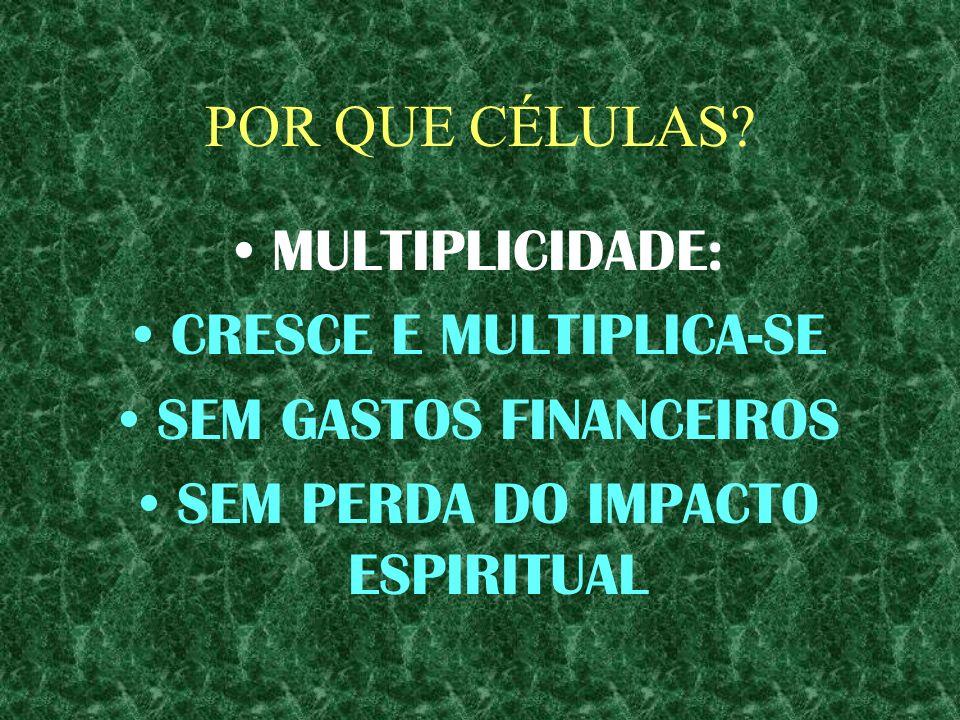 CRESCE E MULTIPLICA-SE SEM GASTOS FINANCEIROS