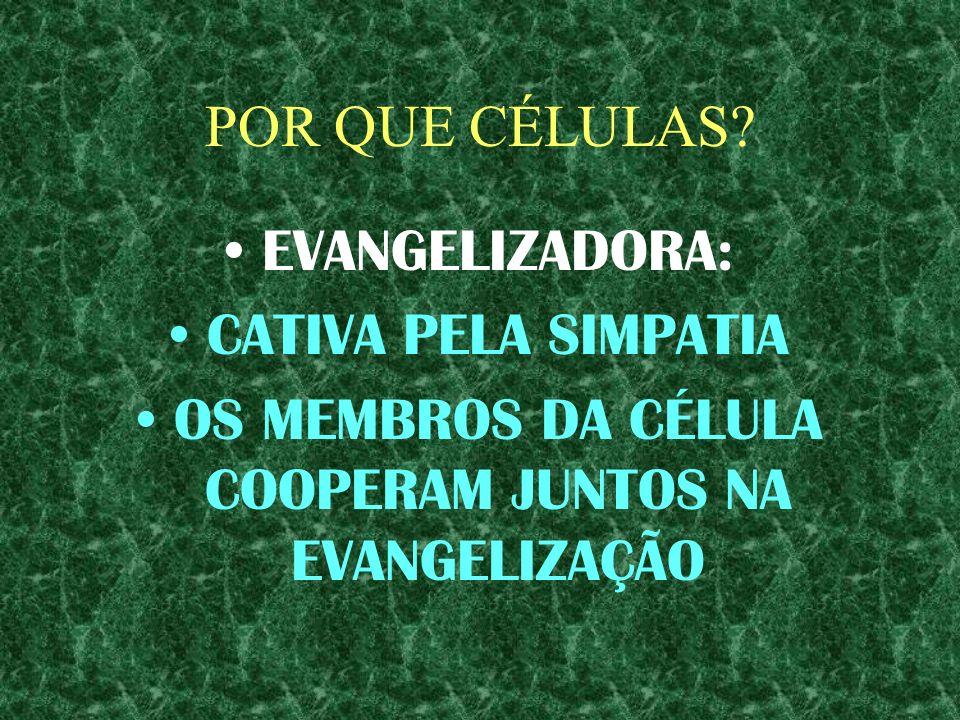 OS MEMBROS DA CÉLULA COOPERAM JUNTOS NA EVANGELIZAÇÃO