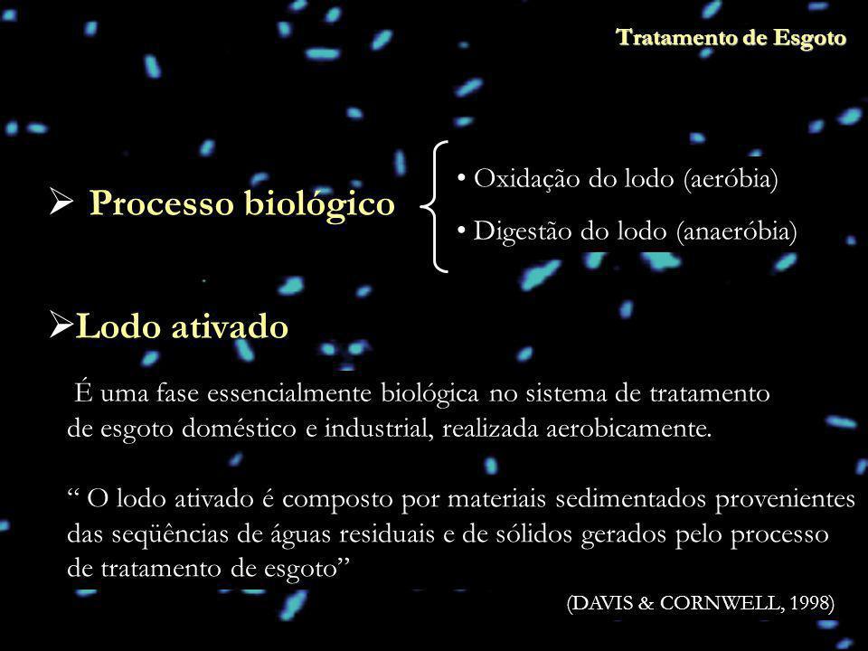 Processo biológico Lodo ativado Oxidação do lodo (aeróbia)