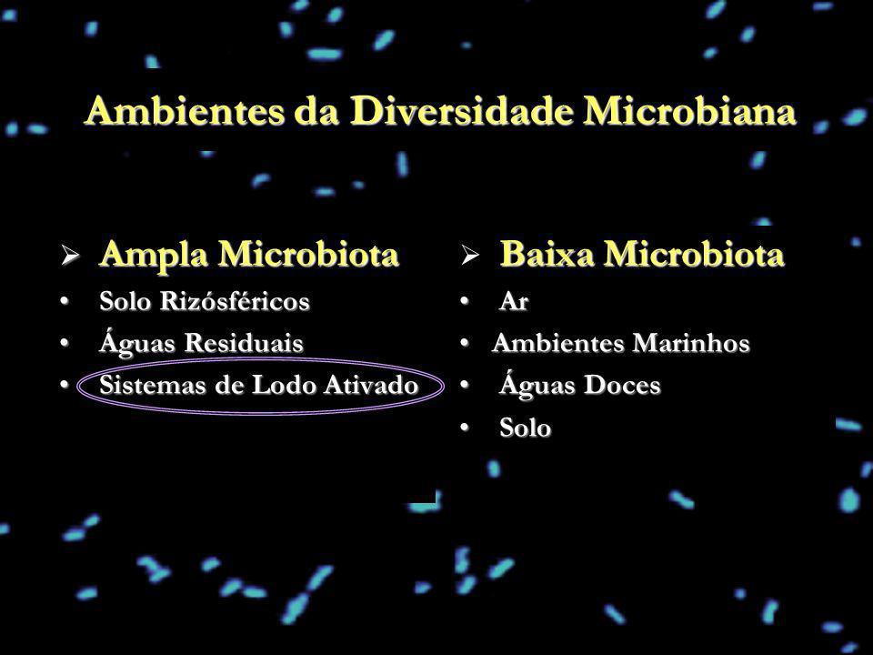 Ambientes da Diversidade Microbiana