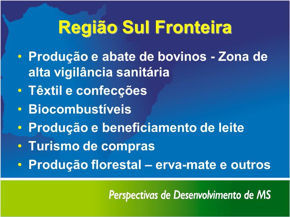 Região Sul FronteiraProdução e abate de bovinos - Zona de alta vigilância sanitária. Têxtil e confecções.