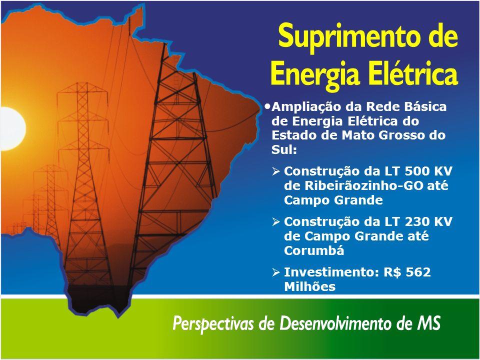 Ampliação da Rede Básica de Energia Elétrica do Estado de Mato Grosso do Sul: