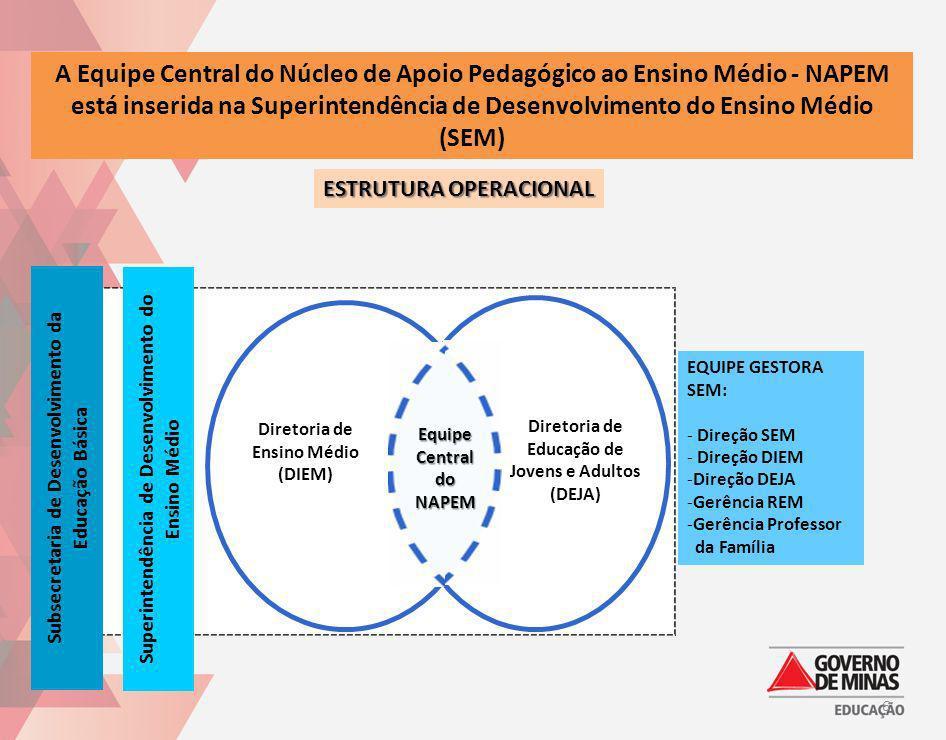 A Equipe Central do Núcleo de Apoio Pedagógico ao Ensino Médio - NAPEM está inserida na Superintendência de Desenvolvimento do Ensino Médio (SEM)