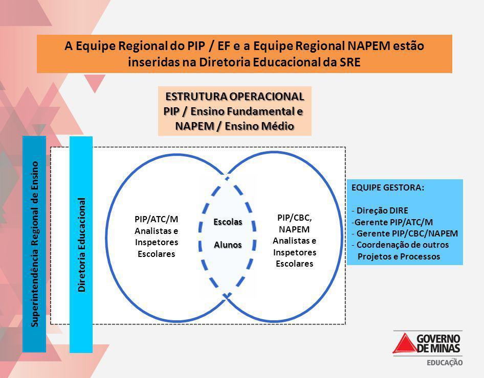 A Equipe Regional do PIP / EF e a Equipe Regional NAPEM estão inseridas na Diretoria Educacional da SRE