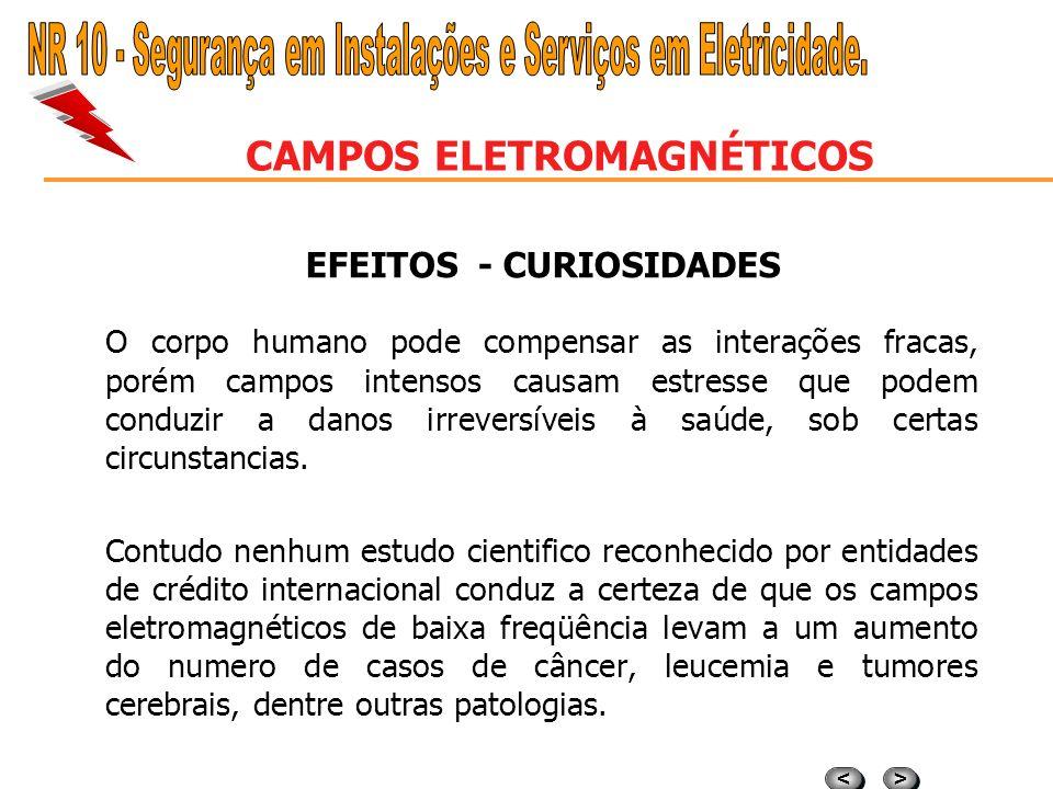 CAMPOS ELETROMAGNÉTICOS