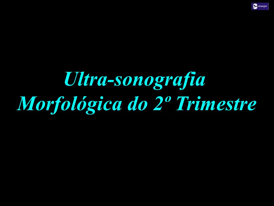 Morfológica do 2º Trimestre