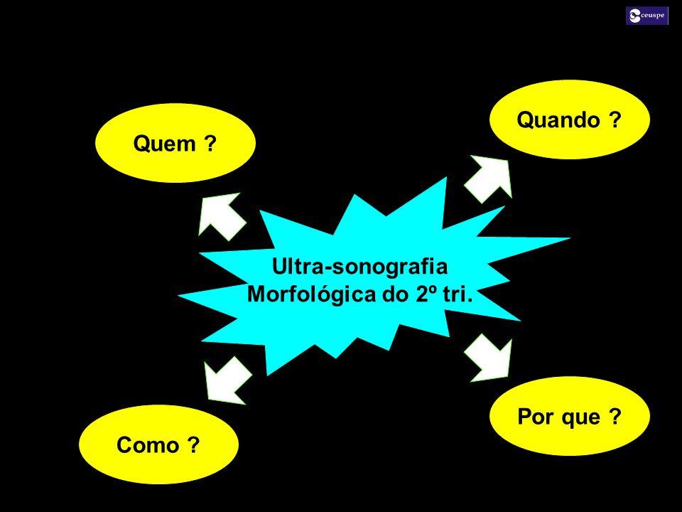 Quando Quem Ultra-sonografia Morfológica do 2º tri. Por que Como