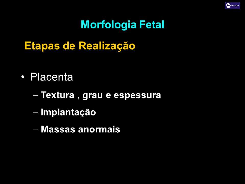 Morfologia Fetal Etapas de Realização Placenta